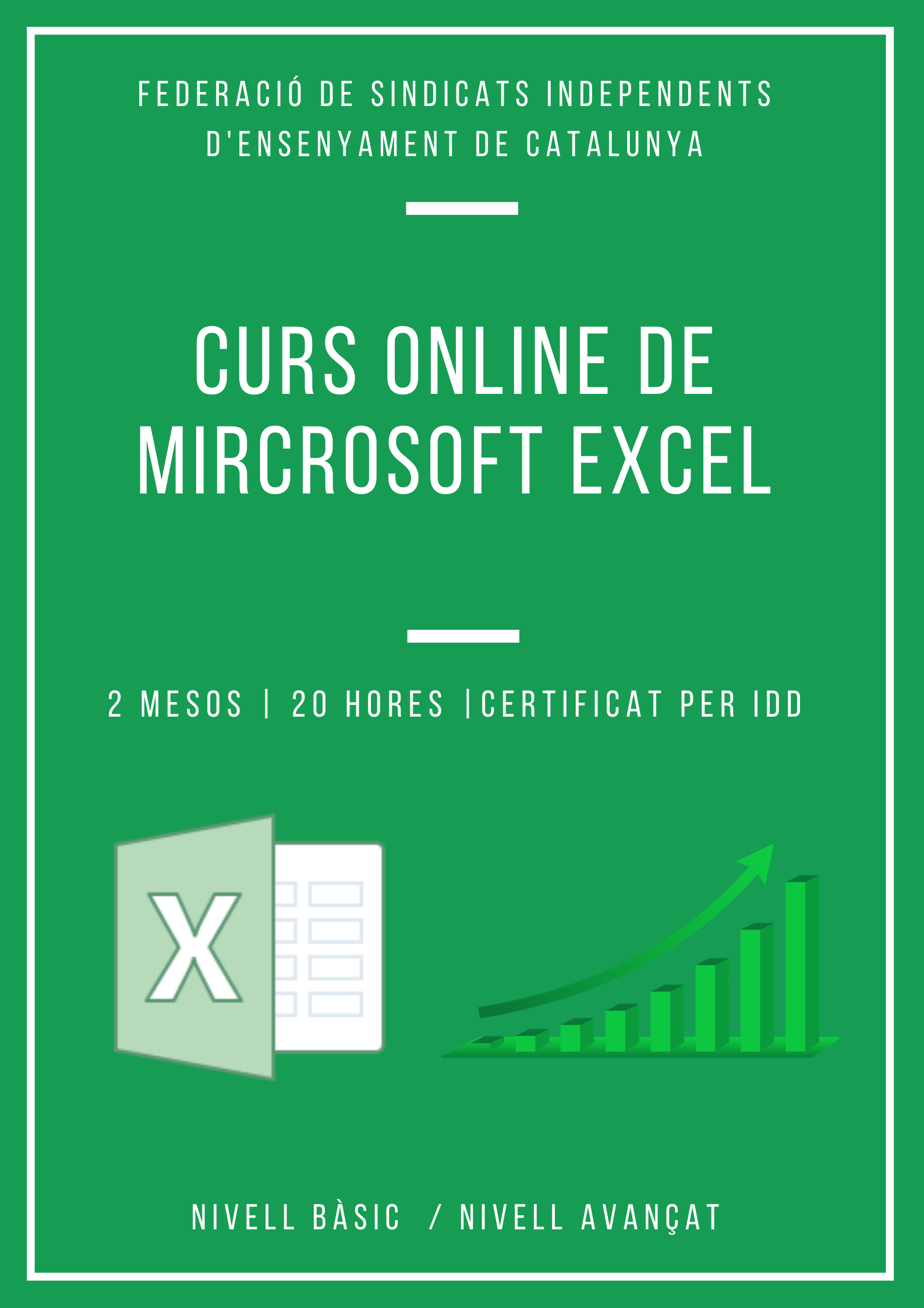 cartell curs excel